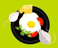 Mouses wil de gebraden eieren eten Royalty-vrije Stock Afbeelding