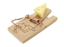 Mousetrap 1. Close up of mousetrap with cheese  on white background with clipping path Stock Photography