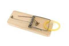 mousetrap Royaltyfri Bild