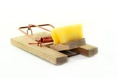 Mousetrap. Tense mousetrap with a piece of cheese Stock Photos