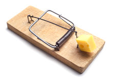 Mousetrap Stock Images