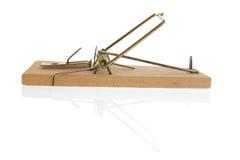 mousetrap Fotografering för Bildbyråer