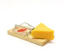 Mousetrap. Baited with a wedge of cheese Royalty Free Stock Images