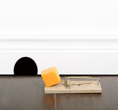 Mousetrap. Set with cheddar cheese on a floor, next to a mouse hole Royalty Free Stock Photo