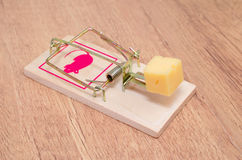 mousetrap Стоковые Изображения RF