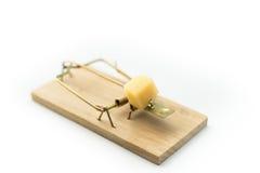mousetrap Lizenzfreie Stockfotos