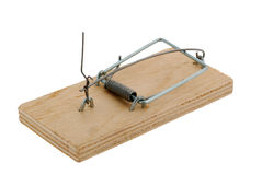 Mousetrap. The adaptation for catching mice and other fine rodents Stock Photo