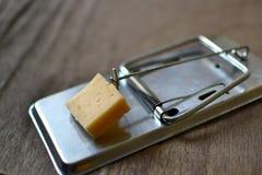 mousetrap Obraz Royalty Free