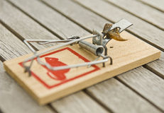 Mousetrap. With bate on a woodtabel Royalty Free Stock Photography