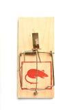 mousetrap Obrazy Stock