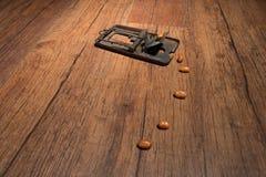 Mousetrap arrugginito Immagini Stock