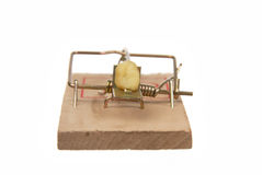 Mousetrap with bait Royalty Free Stock Photography
