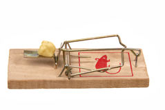 Mousetrap with bait Royalty Free Stock Images
