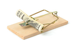 Mousetrap with banknotes Royalty Free Stock Photo