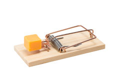 Mousetrap with Cheddar Cheese - Isolated Royalty Free Stock Photography