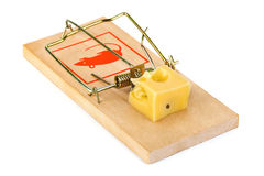 Mousetrap and cheese. Isolated on white background Royalty Free Stock Photos
