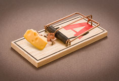 Mousetrap with Cheese. Isolated on a neutral background stock photos