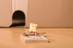 Mousetrap and cheese. Mousetrap with cheese royalty free stock photos