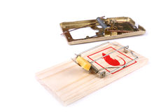 Mousetrap with cheese and empty Royalty Free Stock Photography