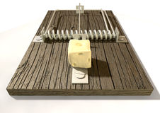 Mousetrap With Cheese Front Royalty Free Stock Image