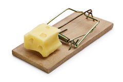 Mousetrap with cheese incentive. Mousetrap baited with cheese concept for risk, incentive and temptation stock photo