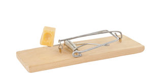 Mousetrap with cheese isolated Royalty Free Stock Photos