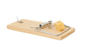 Mousetrap with cheese isolated Royalty Free Stock Photo