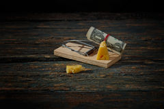 Mousetrap cheese and one dollar Stock Photo