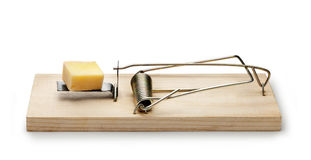 Mousetrap Cheese Trap. A mouse or rat trap with a piece of cheese for bait. Isolated on white Royalty Free Stock Photo