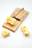 Mousetrap with cheese Royalty Free Stock Photos