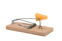 Mousetrap with cheese Royalty Free Stock Photography