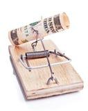 Mousetrap cobrado com a nota de banco de cinco dólares fotografia de stock
