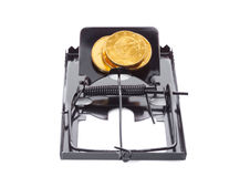 Mousetrap with coins Stock Photography