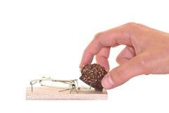Mousetrap com chocolate Imagens de Stock Royalty Free
