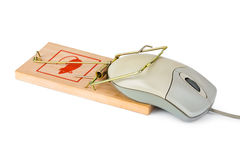 Mousetrap and computer mouse Stock Photos