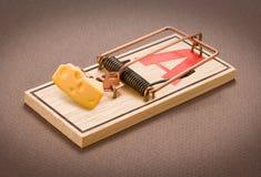 Mousetrap con formaggio Fotografie Stock