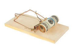 Mousetrap with dollars Stock Photos