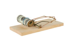 Mousetrap with dollars Stock Photo