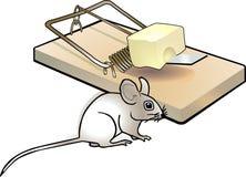 Mousetrap e rato Imagens de Stock