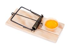Mousetrap with egg Stock Image