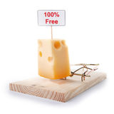 Mousetrap with free cheese Royalty Free Stock Images
