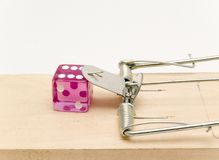 Mousetrap and given Stock Images