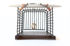 Mousetrap With Golden Ring Stock Image