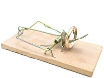 Mousetrap with golden ring Stock Photo