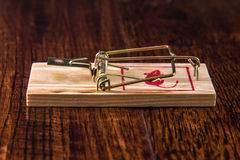 Mousetrap on Hardwood Floor Royalty Free Stock Photos