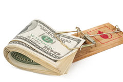 Mousetrap with hundred dollars bill. Royalty Free Stock Image