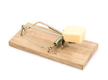 Mousetrap. Isolated on white background Stock Image