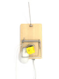 Mousetrap on lan port Royalty Free Stock Photography