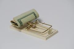 Mousetrap med dollartecknet som isoleras på vit bakgrund Royaltyfria Bilder