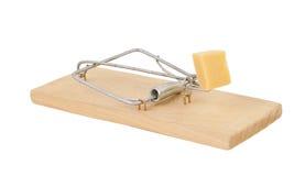 Mousetrap med isolerad ost Arkivbild